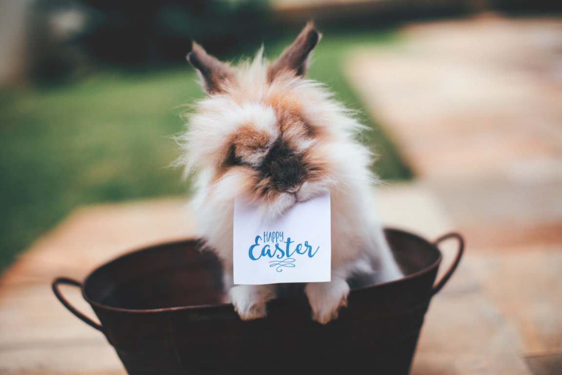 Easter Hours 2018